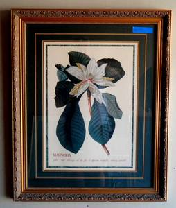 Lovely Magnolia Print in custom wood frame - measures 26 x 32